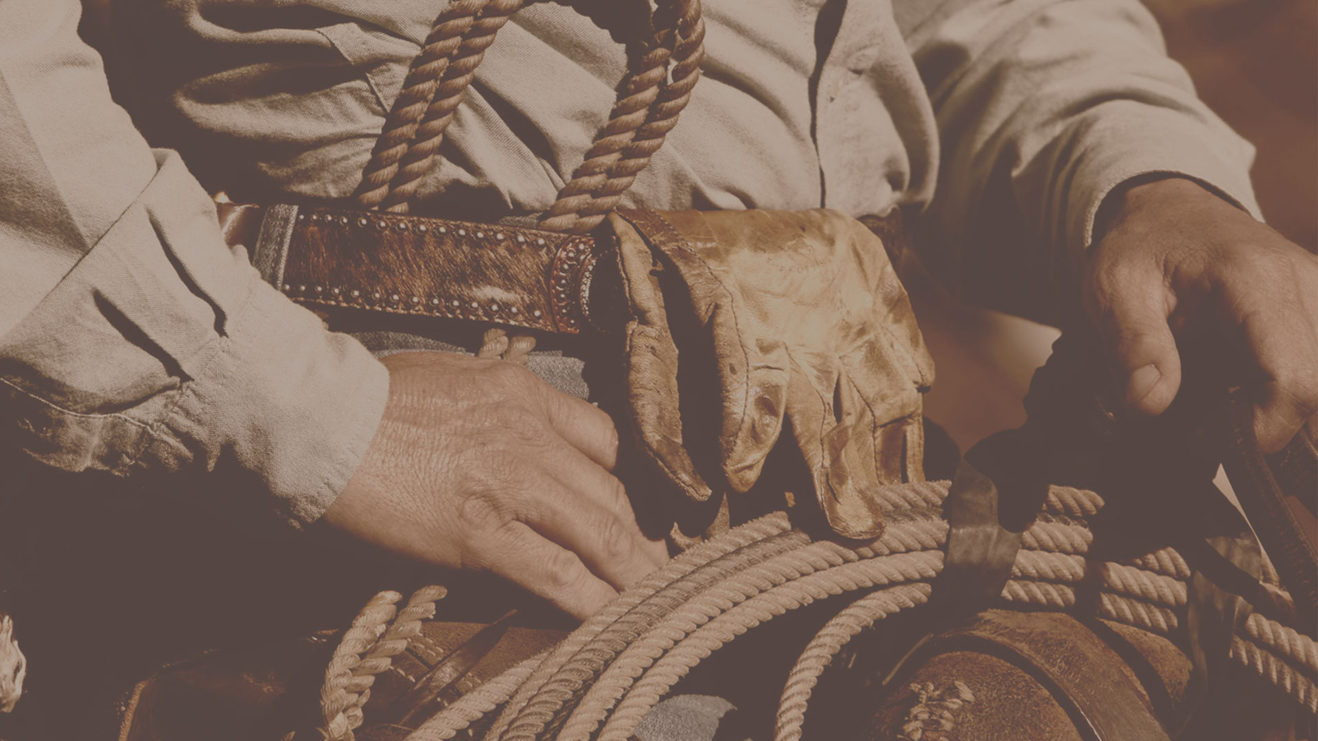 cinturones jaripeos